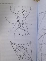 Image result for tim ingold lines
